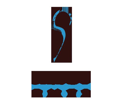 silegy original logo transparent